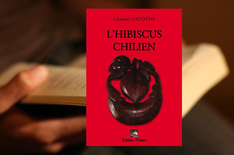 l hibiscus chilien un roman pittoresque par la r unionnaise chantal gaudens. Black Bedroom Furniture Sets. Home Design Ideas